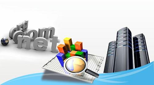 重视域名和网站所有人的重要性